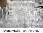 glass glasses for sparkling... | Shutterstock . vector #1236497707