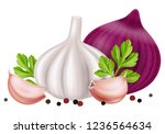 garlic and onion with... | Shutterstock .eps vector #1236564634