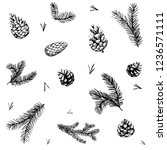 pattern with pine brunches and... | Shutterstock .eps vector #1236571111