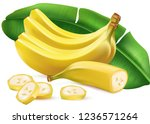banana ripe with leaf and slice ... | Shutterstock .eps vector #1236571264