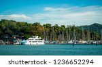 boats and yachts parked at... | Shutterstock . vector #1236652294