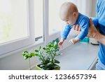 little baby girl touching green ... | Shutterstock . vector #1236657394