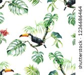 pattern with toucan. tropical... | Shutterstock . vector #1236686464