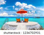 maldives   june 24  2018 ... | Shutterstock . vector #1236702931