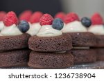 pastries and sweets for the...   Shutterstock . vector #1236738904