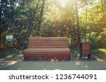 wooden bench in the summer park ...   Shutterstock . vector #1236744091