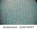 walking path in the park ...   Shutterstock . vector #1236744097