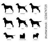 Stock photo dog silhouettes 123674725