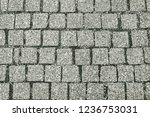 old grey pavement texture... | Shutterstock . vector #1236753031