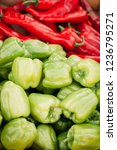 heap of red hot chilli and... | Shutterstock . vector #1236795271