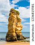 tall rock formation on a sandy... | Shutterstock . vector #1236815581