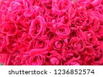 Stock photo many red roses 1236852574