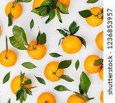 fresh orange mandarins ... | Shutterstock . vector #1236853957