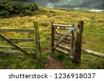 Open Wooden Gate In Fence With...