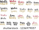 hand drawn lettering set with...   Shutterstock .eps vector #1236979057