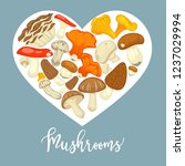 mushrooms edible mushrooming... | Shutterstock .eps vector #1237029994