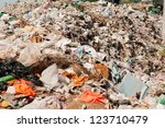 garbage  pollution  global... | Shutterstock . vector #123710479