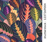 seamless pattern with tropical... | Shutterstock .eps vector #1237269004