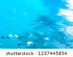 aerial view of the seabed in...   Shutterstock . vector #1237445854