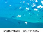 aerial view of the seabed in...   Shutterstock . vector #1237445857