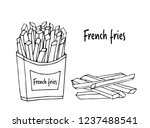 fried potatoes.  hand drawn... | Shutterstock .eps vector #1237488541