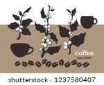 vector set. coffee tree  branch ... | Shutterstock .eps vector #1237580407