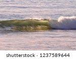 Translucent  Sunlit Wave...