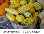 basket of striped yellow and... | Shutterstock . vector #1237755334