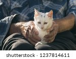 elderly man cuddling small... | Shutterstock . vector #1237814611
