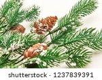 plastic coniferous branches... | Shutterstock . vector #1237839391