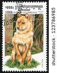 Small photo of CAMBODIA - CIRCA 1999: stamp printed by Cambodia, shows a dog?ainu ken) circa 1999