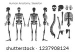 vector illustration set of... | Shutterstock .eps vector #1237908124