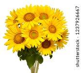 Flower Bouquet Sunflowers...