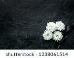 funeral symbols. white flower... | Shutterstock . vector #1238061514