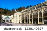 czech republic  marianske lazne ... | Shutterstock . vector #1238140927