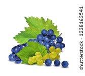 fresh  nutritious  tasty grapes.... | Shutterstock .eps vector #1238163541