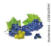 fresh  nutritious  tasty grapes.... | Shutterstock .eps vector #1238163544