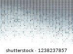 light blue vector texture with... | Shutterstock .eps vector #1238237857