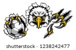 an eagle bird soccer football... | Shutterstock .eps vector #1238242477