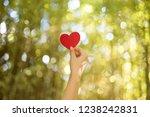 woman hands holding red heart | Shutterstock . vector #1238242831