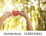 woman hands holding red heart | Shutterstock . vector #1238242861