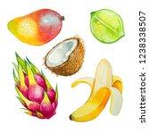 coconut  lime  dragonfruit ...   Shutterstock . vector #1238338507