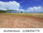 beautiful coconut trees on... | Shutterstock . vector #1238356774