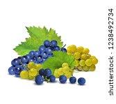 fresh  nutritious  tasty grapes.... | Shutterstock .eps vector #1238492734