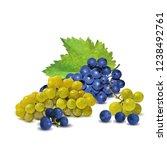 fresh  nutritious  tasty grapes.... | Shutterstock .eps vector #1238492761
