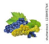 fresh  nutritious  tasty grapes.... | Shutterstock .eps vector #1238492764