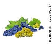 fresh  nutritious  tasty grapes.... | Shutterstock .eps vector #1238492767