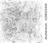 grunge texture is black and... | Shutterstock . vector #1238523334