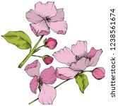 vector. appe blossom flowers.... | Shutterstock .eps vector #1238561674