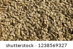 background on pumpkin seeds | Shutterstock . vector #1238569327